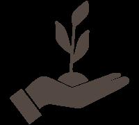 sostenibilit